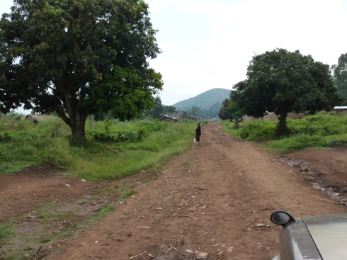 The beautiful drive into Nyankunde